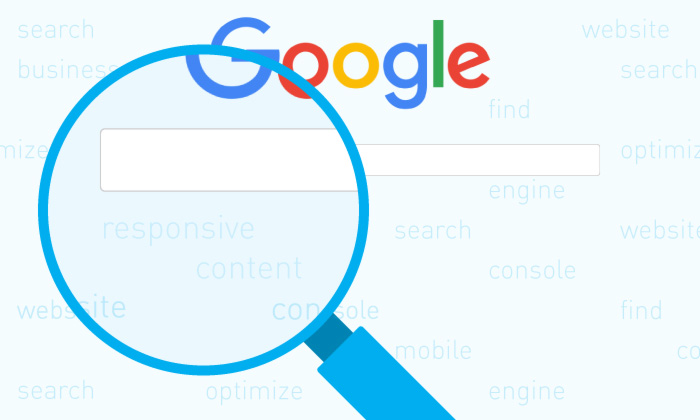 Google search bar magnify